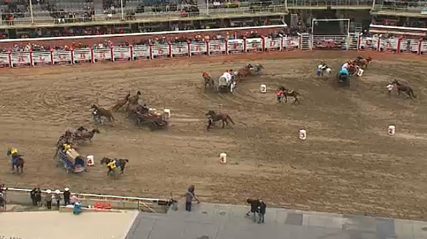 Officials Investigating Horse Death At Calgary Stampede