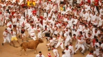 A reveller is tossed by a cow with dull horns during a celebration held at the bullring after the running of the bulls of the San Fermin festival in Pamplona, Spain, Tuesday, July 7, 2015. (AP / Daniel Ochoa de Olza)