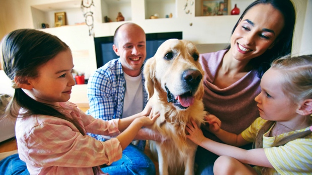 5 ways pets can benefit your health