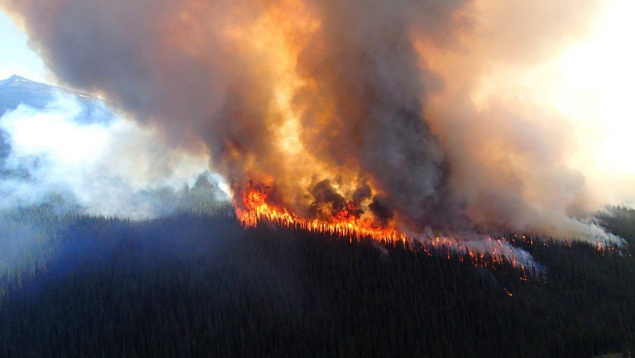 A wildfire rises over a hill in Jasper National Park on Thursday July 9, 2015. An evacuation of part of Jasper National Park has been ordered due to a forest fire in the picturesque Maligne Valley. (Jasper National Park of Canada)