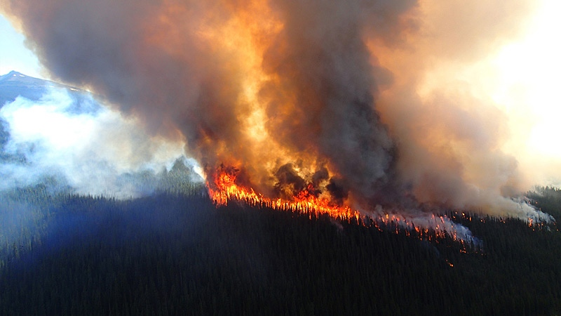 Crews were working to gain the upper hand on a quickly growing wildfire in Jasper National Park on Thursday, July 9. Courtesy: Parks Canada