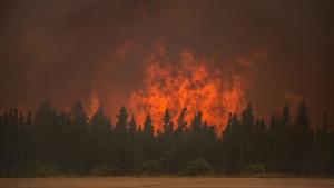 Wildfire La Ronge