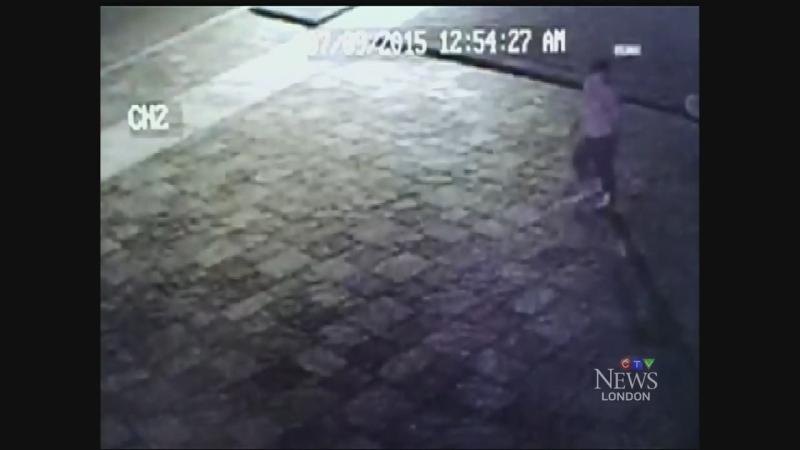 Screenshot of mailbox theft caught on camera