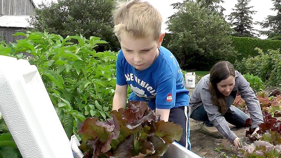 Leo Weiskittel growing lettuce