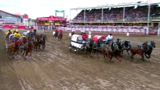 Fourth hourse euthanized at the Calgary Stampede