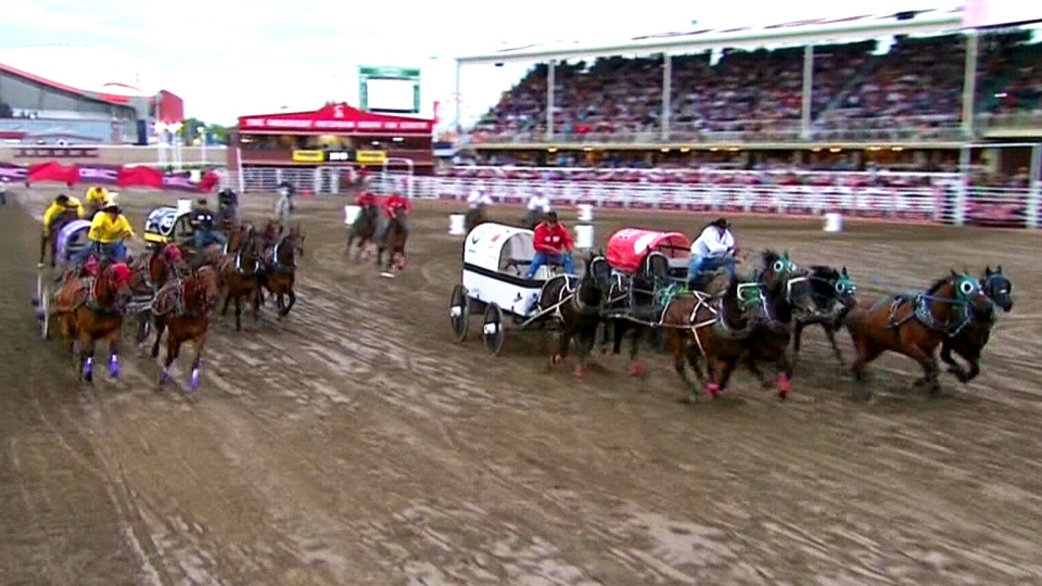 Officials with the Calgary Stampede says a fourth horse had to be euthanized during the Rangeland Derby on Sunday. The horse of one of Dave Galloway's outriders suffered a ligament injury during Heat One.