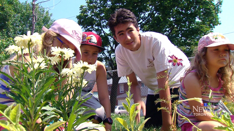 Students in Etobicoke were angry to find that flowers from their school garden have been stolen.