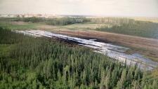 Nexen apologizes for Fort McMurray oil spill