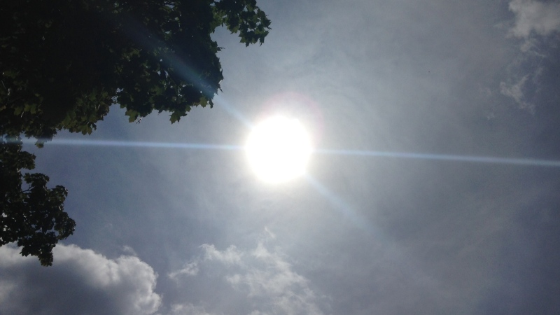 The sun shone on Kitchener-Waterloo, bringing high temperatures on July 18, 2015. (Kevin Doerr / CTV Kitchener)