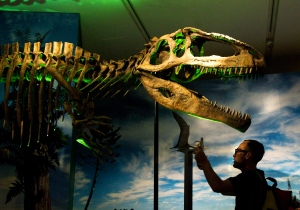A person is silhouetted along side a prehistoric dinosaur at the Royal Ontario Museum in Toronto in this file photo from Wednesday, June 20, 2012. (Nathan Denette/THE CANADIAN PRESS)