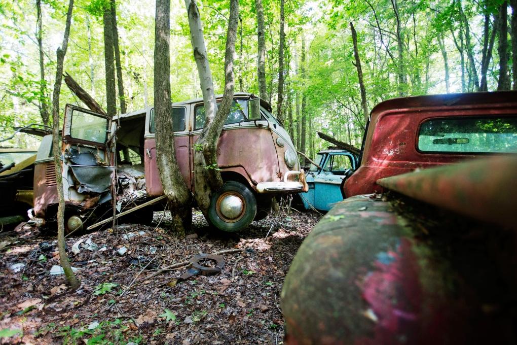 Image result for junk car business