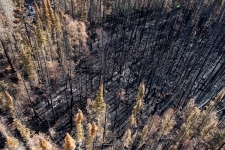 Saskatchewan wildfires