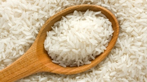 Uncooked rice (Malczyk / shutterstock.com)