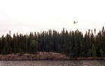 A float plane approaches Granite Lake in the Wabakimi Provincial Park of northern Ontario to pick up a wilderness canoe trip on Monday, May 22, 2000. (AP / Jay Horvath)