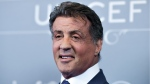 Sylvester Stallone arrives at the 2014 UNICEF Ball in Beverly Hills, Calif. on Jan. 14, 2014. Stallone has put hundreds of props from movies he starred in up for auction. (Invision / Richard Shotwell)