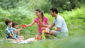 Canada AM: Packing the perfect picnic