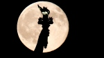 A blue moon rises behind the torch of the Statue of Liberty seen from Liberty State Park in Jersey City, N.J., Friday, July 31, 2015. A blue moon happens when the moon rises in its full stage twice during the same month. (AP / Julio Cortez)