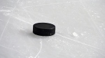 Two Ontario students are trying to make a hockey puck for blind players. (Vladislav Gajic/shutterstock.com)