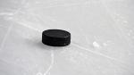 A hockey puck is seen in this undated image. (Vladislav Gajic/shutterstock.com)