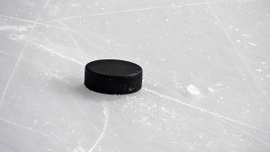 A hockey puck is seen in this undated image. (Vladislav Gajic/shutterstock.com)