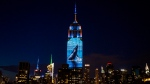 Images of endangered species are projected on the south facade of The Empire State Building, Saturday, Aug. 1, 2015, in New York. (Craig Ruttle/AP Photo)