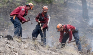 Firefighters work a wildfire burning in West Kelowna, B.C., on Thursday, July 23, 2015. (Jonathan Hayward / THE CANADIAN PRESS)