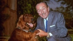 Walt Disney poses for a photo with an Irish setter on Dec. 23, 1965. (AP)