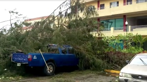 Damage from Typhoon Soudelor that had sustained winds around 160 kph and gusts up to 190 kph can be seen in this still image taken from video shot on the island of Saipan. (YouTube / Andrey Kremarenko)