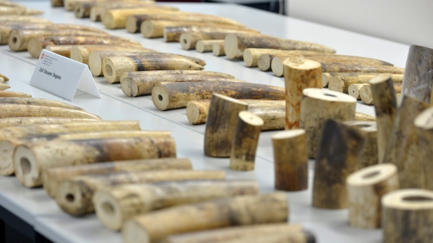 Famous Pool Cue Maker Charged With Helping Smuggle