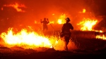 A firefighter lights a backfire as the Rocky Fire burns near Clearlake, Calif., on Monday, Aug. 3, 2015. (AP / Josh Edelson)