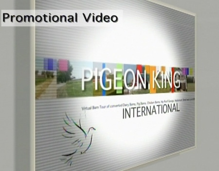 An image taken from a promotional video for Pigeon King International.