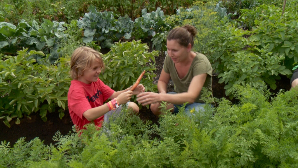 Mission harvests from community garden