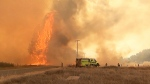 Thousands evacuated as wildfires rage in Cali.
