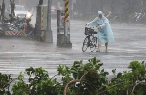 Behind fallen trees, a man braves the strong winds from Typhoon Soudelor with his bicycle in Taipei, Taiwan, Saturday, Aug. 8, 2015. (AP / Wally Santana)