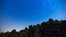 Two Perseid meteors streak across the sky during the annual Perseid meteor shower above a forest on the outskirts of Madrid, in the early hours of Monday, July 28, 2014. (AP /Andres Kudacki)