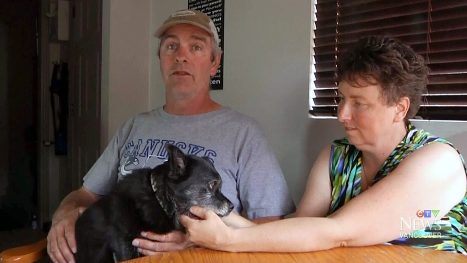 Niki and Mark Traverse credit their 9.5-year-old dog, Sid, with alerting them to a grizzly bear that broke into their Kimberley, B.C. home early Sunday morning.