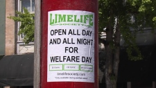 Limelife Society