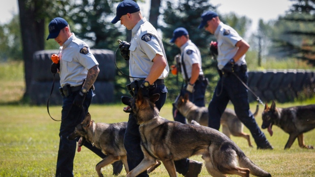 Rcmp Dog Training