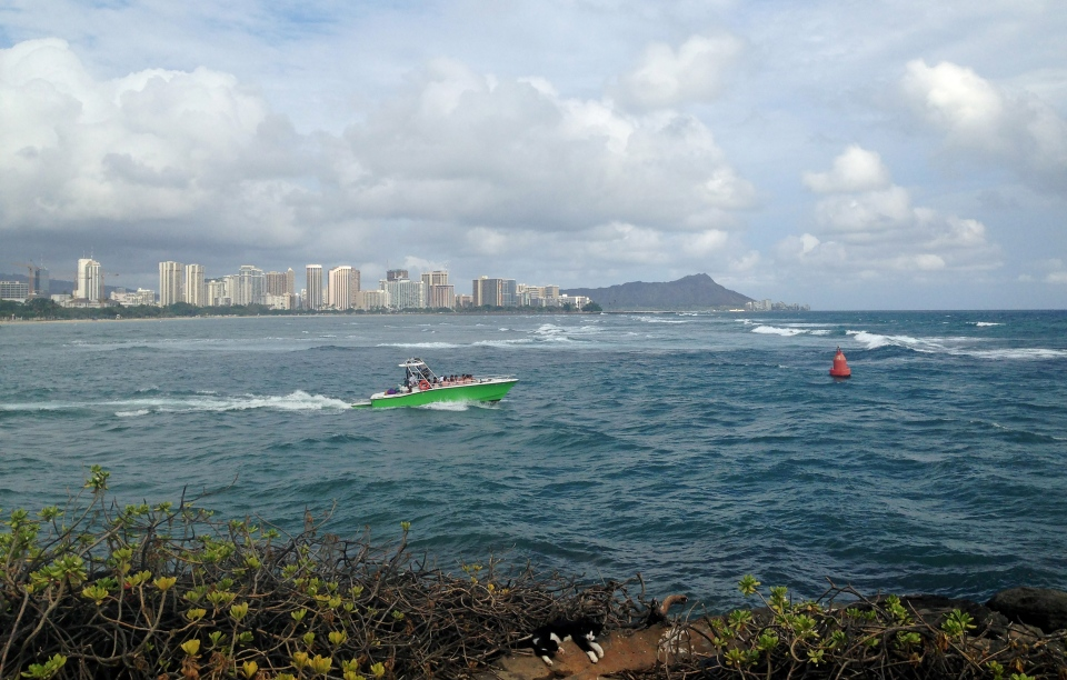 Point Panic in Honolulu, Monday, Aug. 24, 2015. Tropical Depression Kilo moved farther away from the main Hawaiian Islands on Monday after moisture associated with the system dumped heavy rain on the state. Heavy rain caused wastewater to spew from manholes near the popular tourist destination of Waikiki. (AP Photo/Cathy Bussewitz)