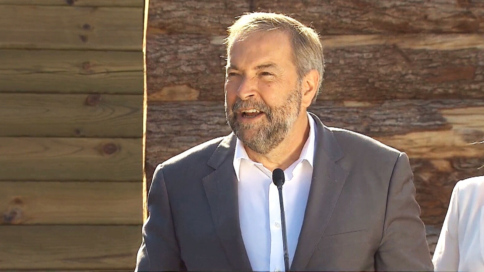 NDP Leader Thomas Mulcair speaks to the media at a campaign stop in Dundas, Ont., Aug. 25, 2015.
