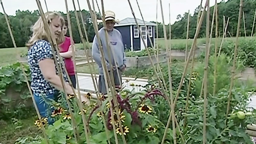 CTV Barrie: Community garden
