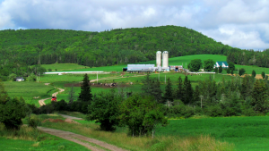 Martin Evans of Sydney Mines snapped this photo of a farm near Whycocomagh, N.S.