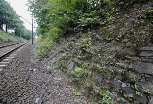 The possible site where a Nazi gold train is believed to be hidden, near the city of Walbrzych, Poland, Friday, Aug. 28, 2015. (AP/Str)