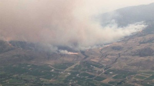 Dozens of homes have been evacuated because of a wildfire burning just outside Oliver, B.C. (Wildfire Management Service)