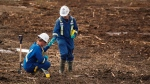Workers take soil samples as crews work to contain and clean up a pipeline spill at Nexen Energy's Long Lake facility near Fort McMurray, Alta., Wednesday, July 22, 2015. (THE CANADIAN PRESS/Jeff McIntosh)