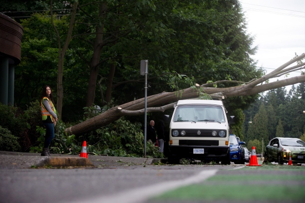 A large tree that was toppled during a windstorm rests on a van in the west end of downtown Vancouver, B.C., on Saturday August 29, 2015. (Darryl Dyck / THE CANADIAN PRESS)