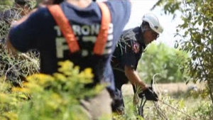 Scarborough Bluffs firefighters rescue