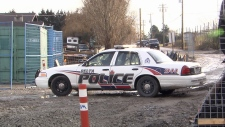A cruiser from the Delta Police Department is seen in this undated CTV News file photo.