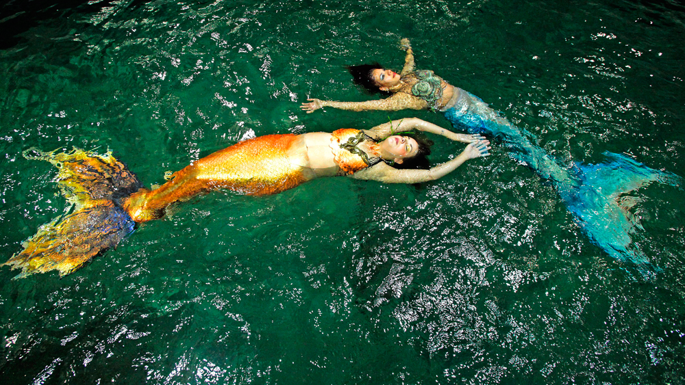 Halifax Mermaids