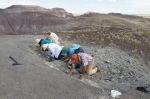 In this photo taken Saturday, Aug. 8, 2015 and released by the National Parks Service, a group of citizens digs for fossils at Petrified Forest National Park near Holbrook, Ariz. (National Park Service )